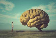 Photo of العقل السليم في الجسم السليم وأهمية الرياضة