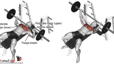 Photo of بنج بريس مستوي لزيادة حجم عضلة الصدر