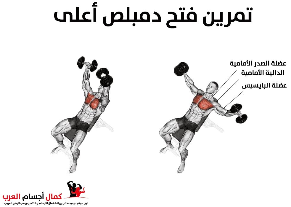 Photo of فتح دامبلز اعلى لإستهداف عضلة الصدر العلوية