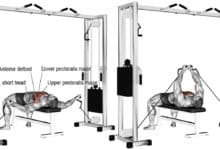 Photo of تفتيح صدر كيبل نائم لتقوية عضلات الصدر