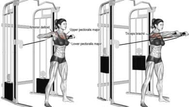 Photo of تفتيح صدر كيبل واقف لتقوية عضلات الصدر