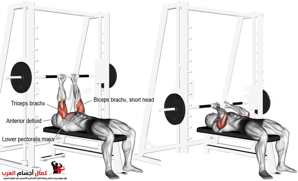 جهاز سميث ماشين لعضلة الترايسبس