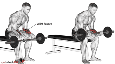 Photo of عضلة الساعد والرست بالبار لتضخيم الذراع