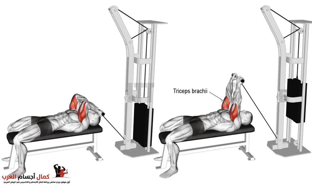 Photo of سحب كيبل نائم لتضخيم عضلة الترايسبس