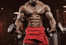 Photo of 8 نصائح للحصول على بناء العضلاتفي رياضة كمال الاجسام