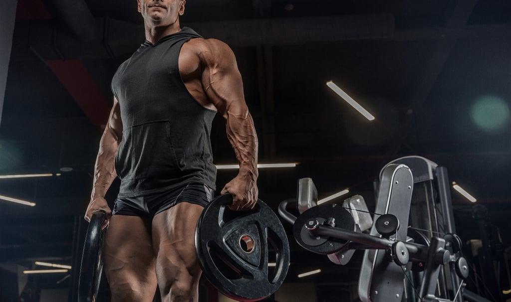 بناء الاجسام والعضلات