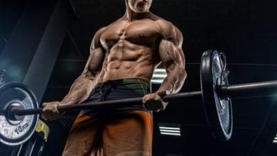 Photo of ست مبادئ تساعد المبتدئين على النجاح في ممارسة كمال الأجسام