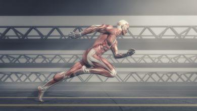 Photo of كورس تدريب كمال أجسام كامل