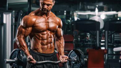 Photo of أفضل طرق بناء العضلات للمبتدئين