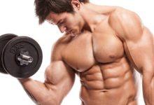 Photo of كيف يمكنك بناء العضلات بسرعة؟