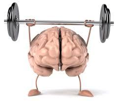 كيف تعمل ذاكرة العضلات؟